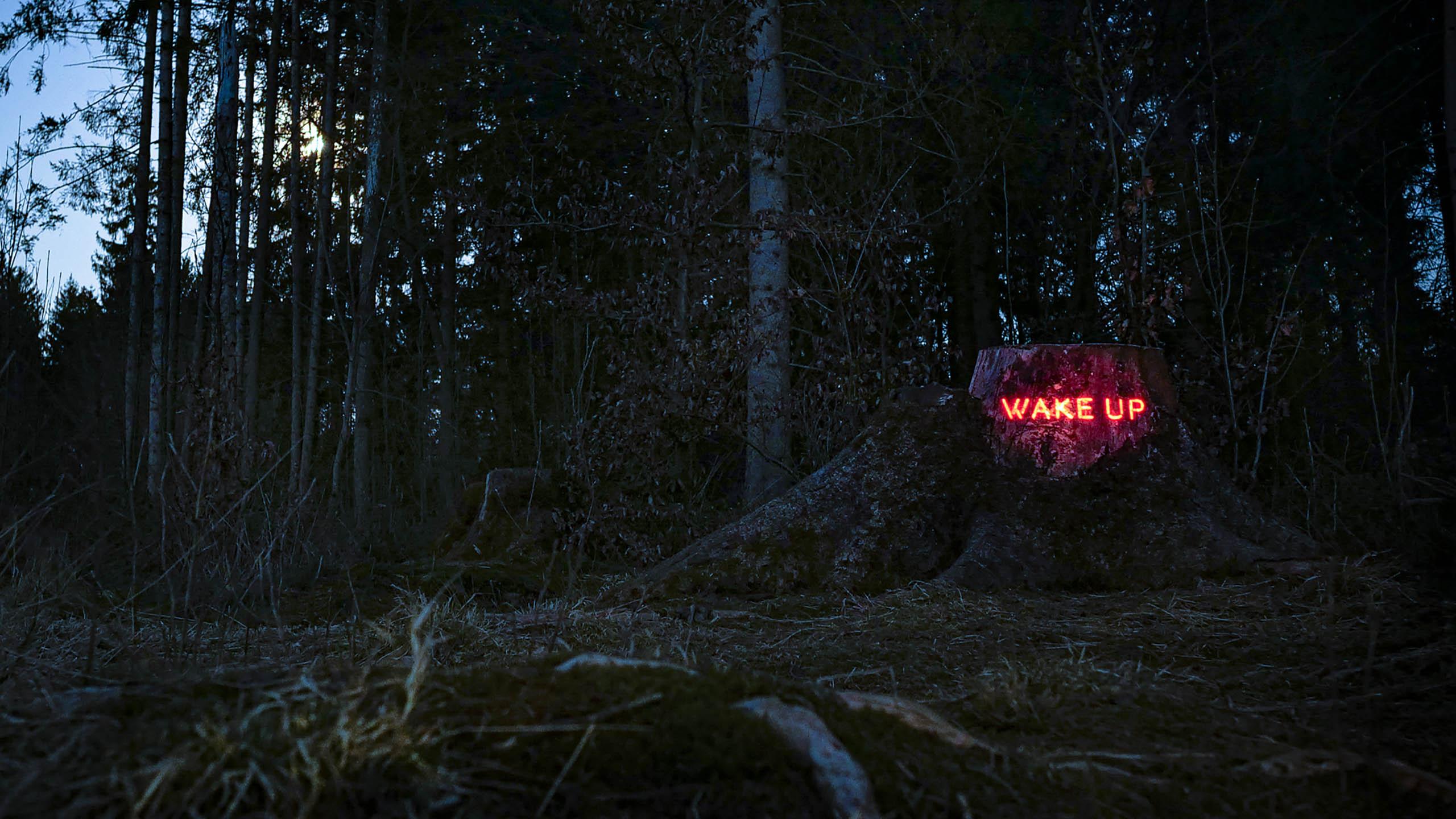 Philipp Frank -artists- künstler - New media - light art - projection - mapping - installation - in  -nature - art -neon,