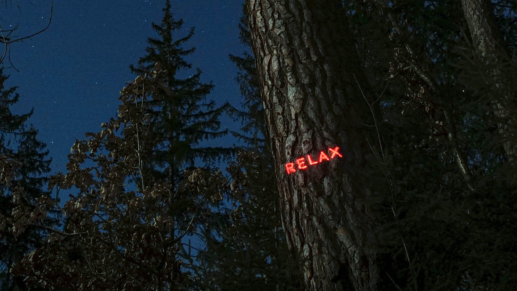 Philipp Frank Philipp Frank -artists- künstler - New media - light art - projection - mapping - installation - in  -nature - art -neon,