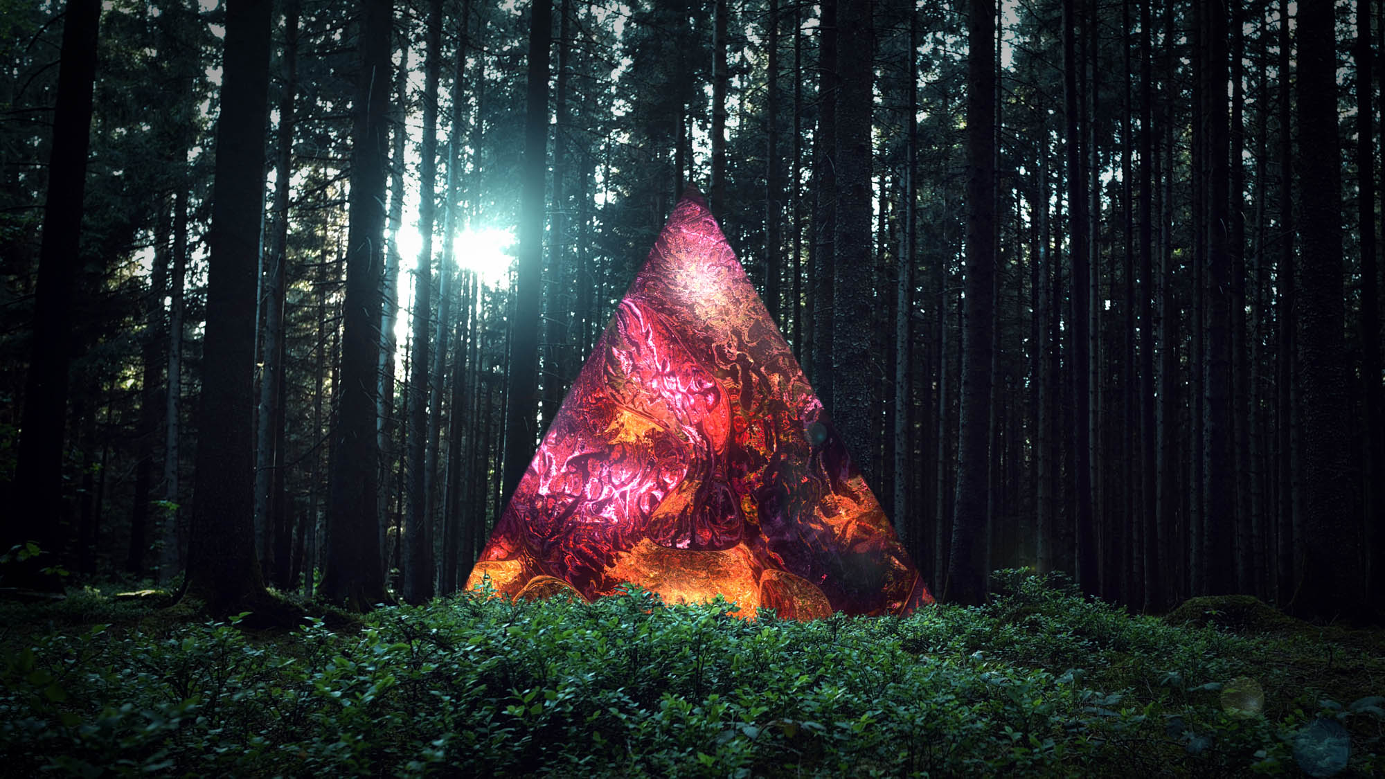 Image of a triangle in a forest-3d digital video artwork-nft
