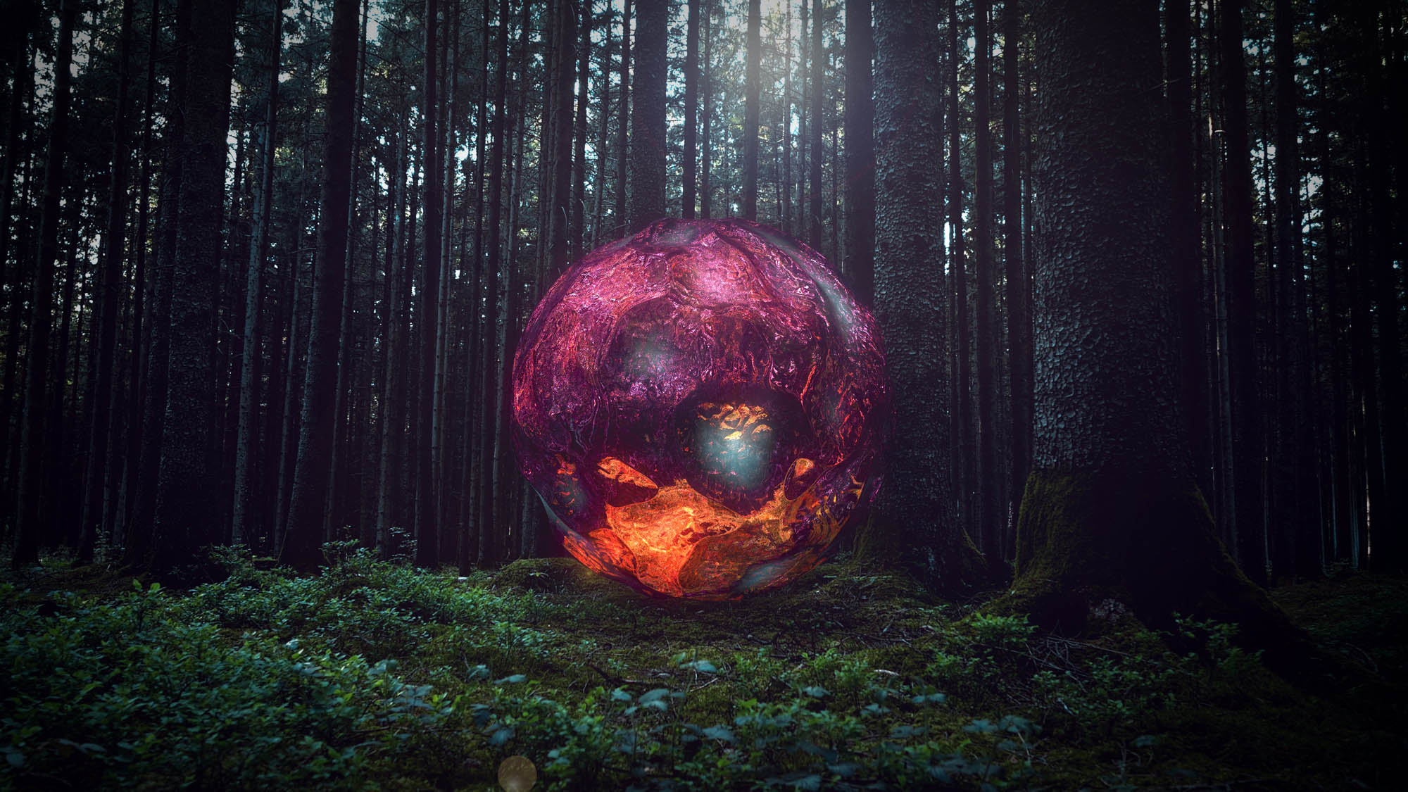 Image of a geometric circle in a forest-3d digital video artwork-nft