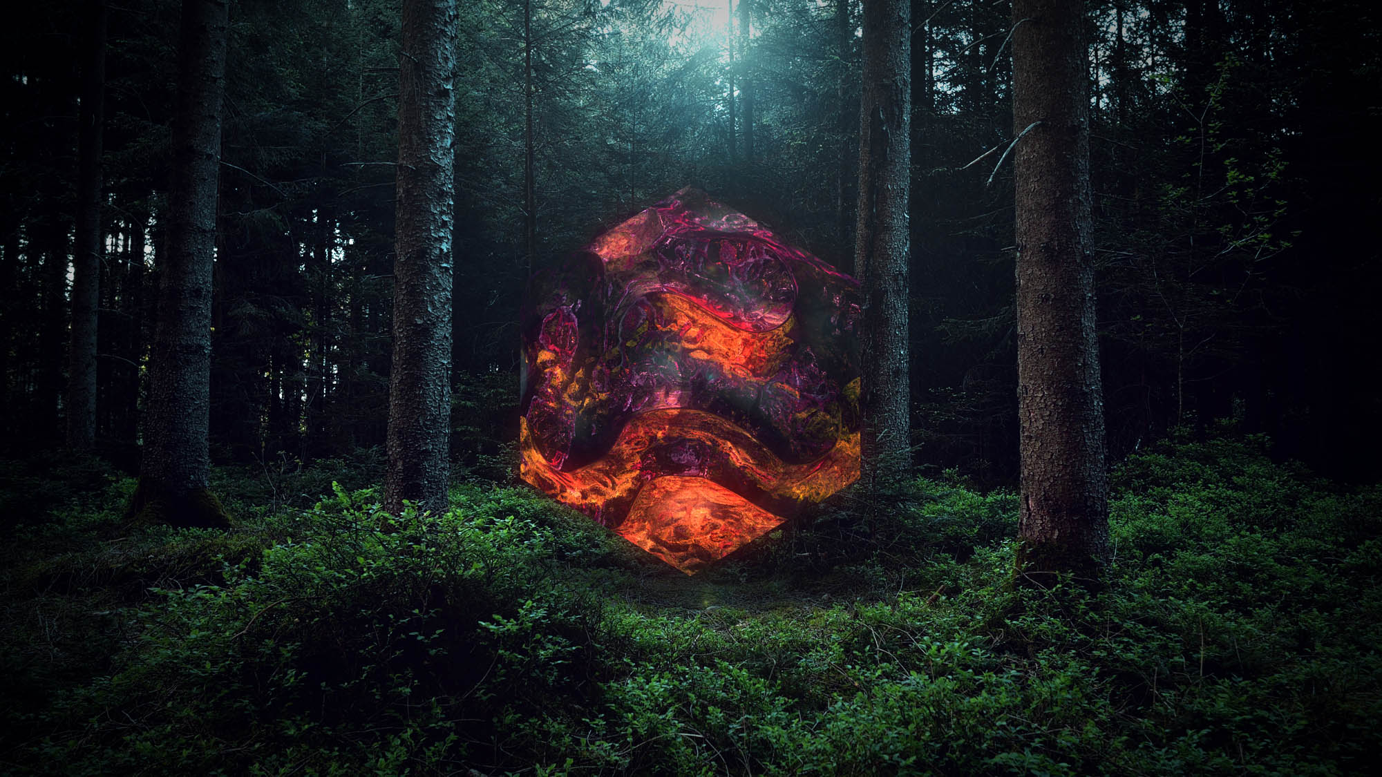Image of a hexahedron in a forest-3d digital video artwork-nft